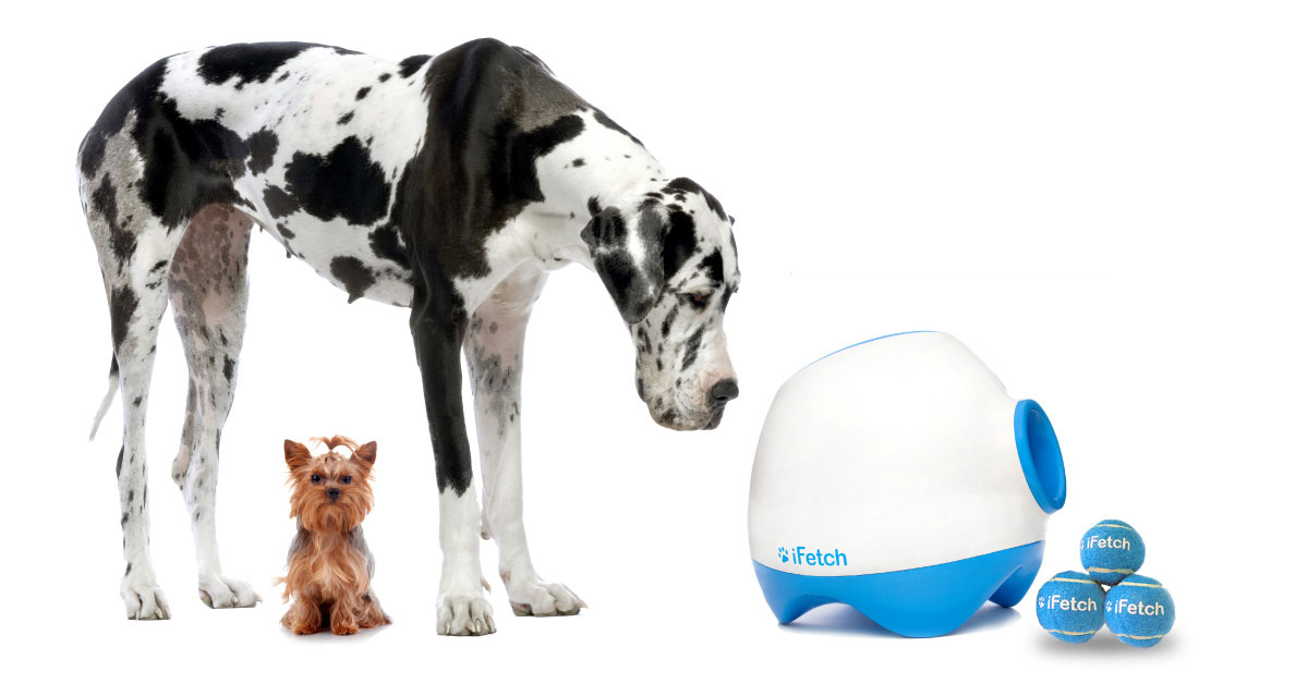 Orijen Dog Food Reviews >> The iFetch for Big Dogs: Meet the 'iFetch Too' 2018 - doggiefetch