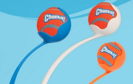 chuckit ball launcher