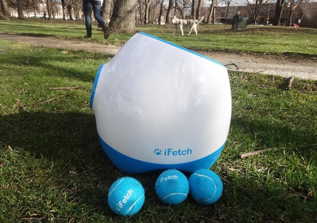 tennis ball launcher park
