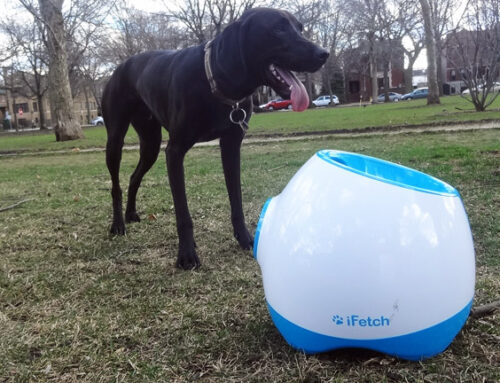 iFetch Too Review Table