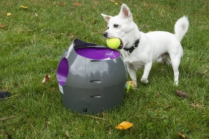 Orijen Dog Food Reviews >> PetSafe, DoggyFun, All for Paws, Sportime: The Newest Dog Ball Launchers on the Market - doggiefetch