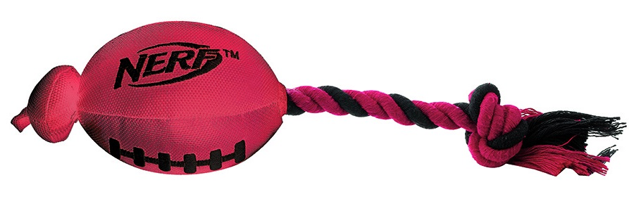 football dog toy nerf
