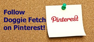 doggie-fetch-pinterest2