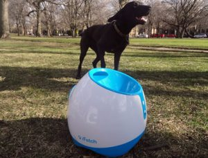 9 best dog ball launchers automatic ball launcher and thrower