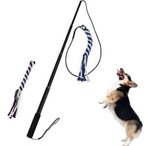 ANG Interactive Dog Tug Toy
