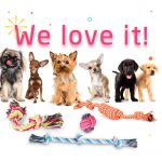 Puppy Toys For Dogs