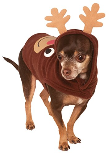 especially for a verylarge breed anyone is going to spot them from a mile away with the antlers and the red nose if you go with rudolph of course