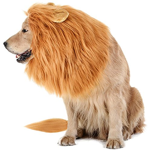... your dog is going to look ferocious cute a little silly and will have a loud roar to back up that costume he or she is wearing this Halloween .  sc 1 st  Doggie Fetch & 7 Large Dog Halloween Costumes For 2018 - Doggie Fetch