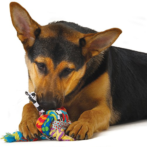 Best Toys For Puppies Home Alone: Buying Advice & Top 5