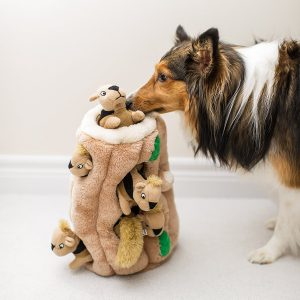 Squeaking Toys