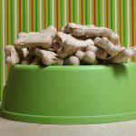 dog treats featured image