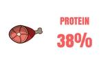 Orijen Dog Food Protein Content Original Dry