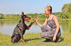 Woman and dog high five