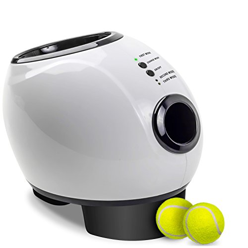 Dog Tennis Ball Launcher >> 9 Best Dog Ball Launchers - Automatic Ball Launcher and Thrower Reviews for 2019 - doggiefetch