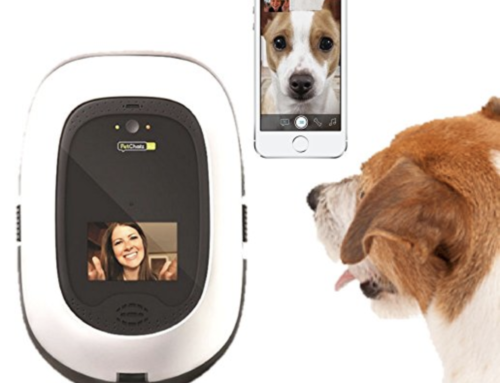 Petchatz HD Play Pet Camera