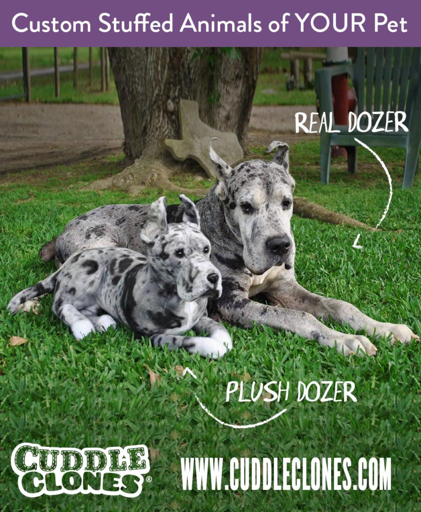 Cuddle Clones Example