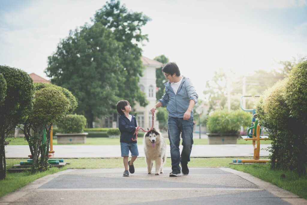 Father Son Walking Dog Japan