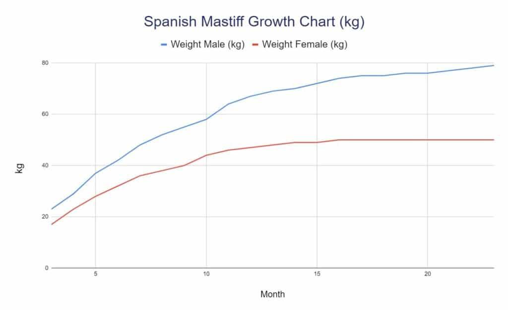 Spanish Mastiff Growth Chart kg