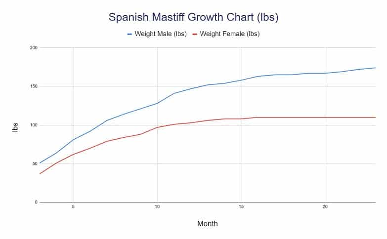 Spanish Mastiff Growth Chart lbs
